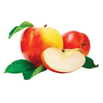 Æble Koncentrat 1:5