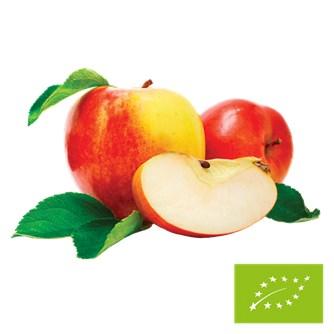 Økologisk Æblekoncentrat 1:5